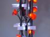 Corallight1 (1).jpg